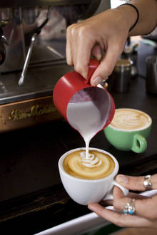 The Essential Barista Course