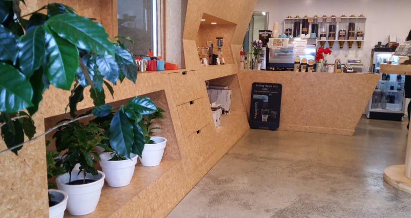 coffee trees in shop-243-343